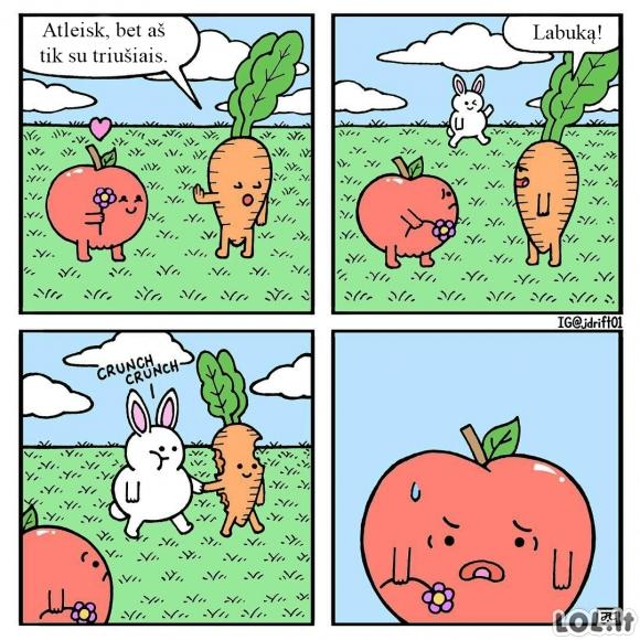 Nenuovoki morka