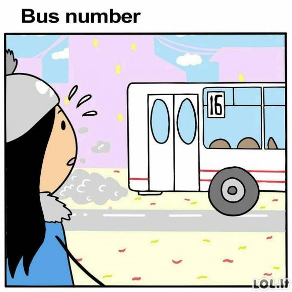 Autobuso numeris