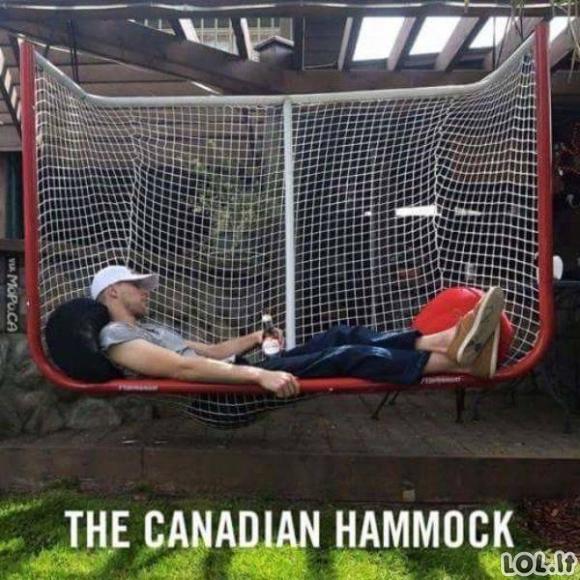 Tuo tarpu Kanadoje (45 nuotraukos)