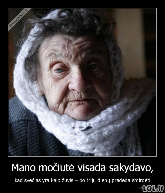 Močiutės išmintis