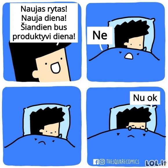 Kai lova nusprendžia tavo dienos produktyvumą
