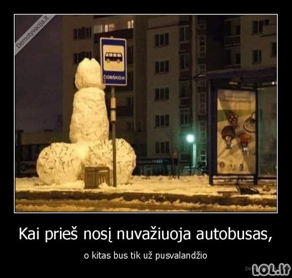 Grožybės iš sniego Lietuvoje