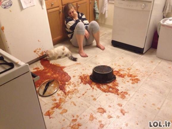 Nelaimėliai virtuvėje [GALERIJA]
