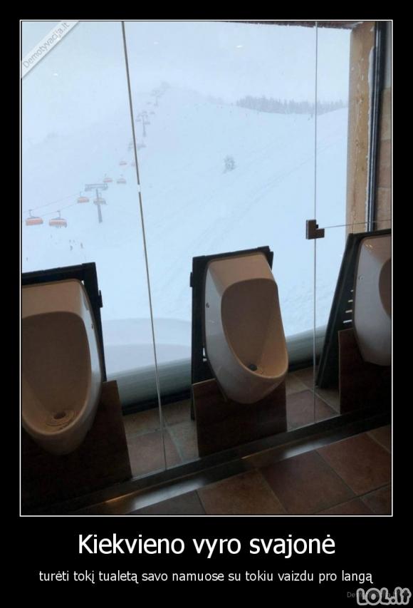 Vyrų tualetas su vaizdu per langą
