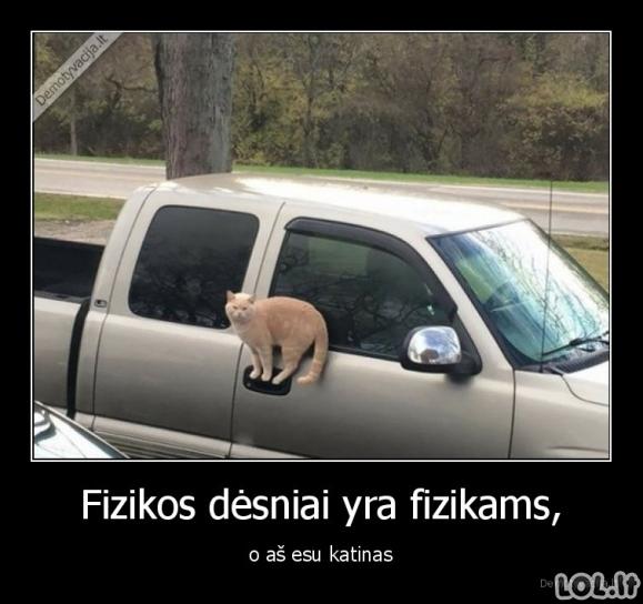 Katinai ir fizika