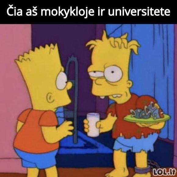 Mokykla vs. Universitetas