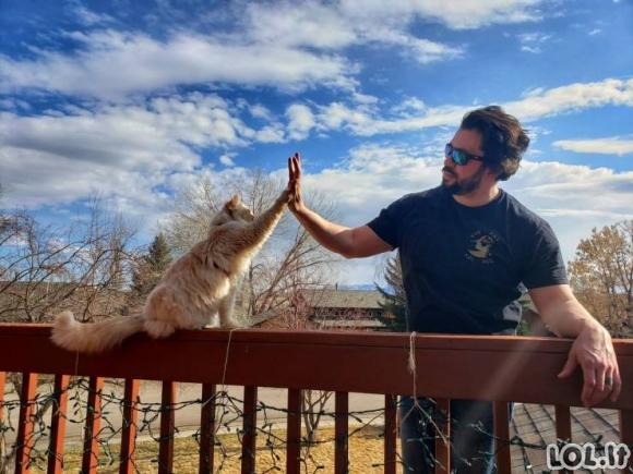 Smagios akimirkos su gyvūnais [GALERIJA]
