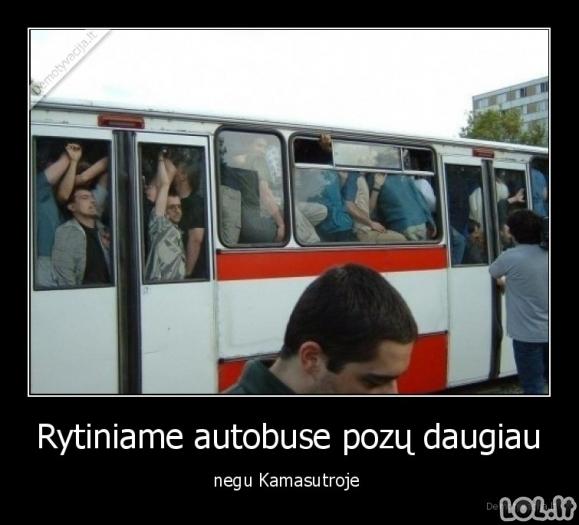 Pozos autobuse