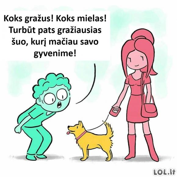 Suirzęs šuo