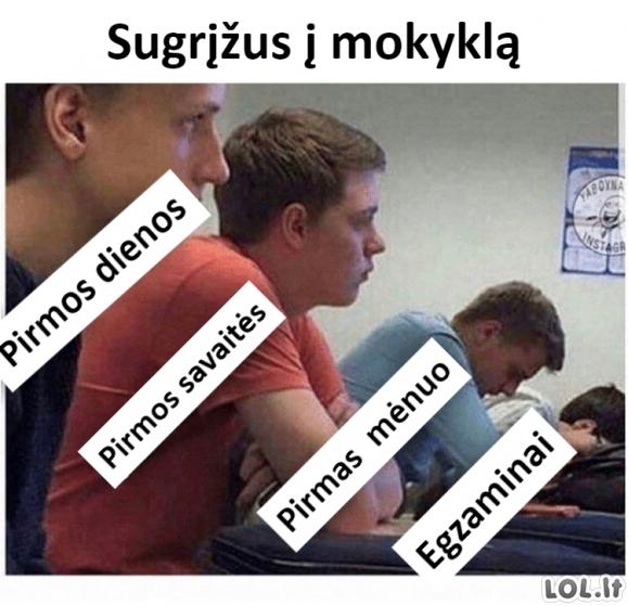Mokykloje