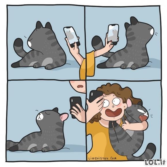 Nuotraukos su katinu