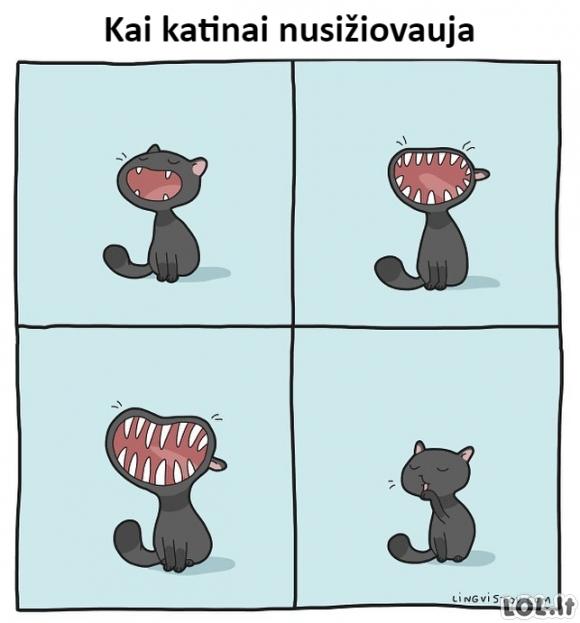 Katinų žiovulys