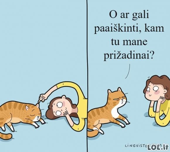 Kai prižadini katinuką