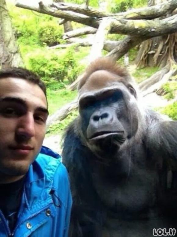 Kvailiausios žmonių pasidarytos nuotraukos, kurios buvo įkeltos į internetą [GALERIJA]