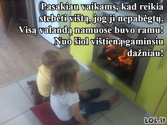 Dar vienas puikus būdas užimti savo vaikus