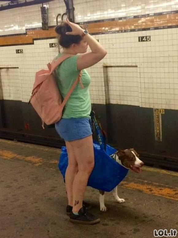 Keisčiausi keleiviai, kuriuos galima pamatyti užsienio metro [GALERIJA]