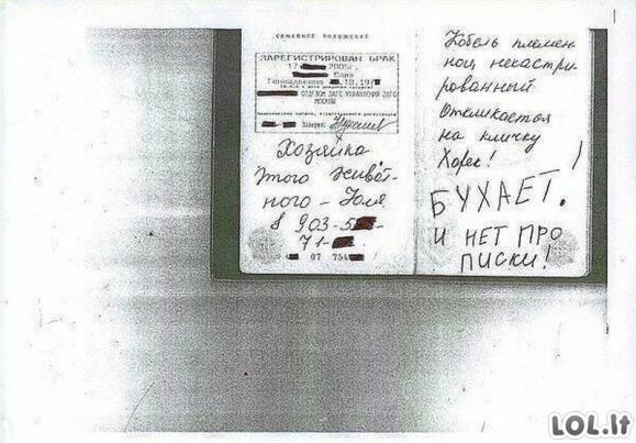 Šių pasų savininkai dabar gailisi, kad paliko savo dokumentus be priežiūros