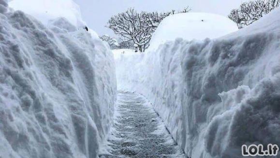 Ekstremaliausi kadrai, užfiksuoti žiemos metu [GALERIJA]