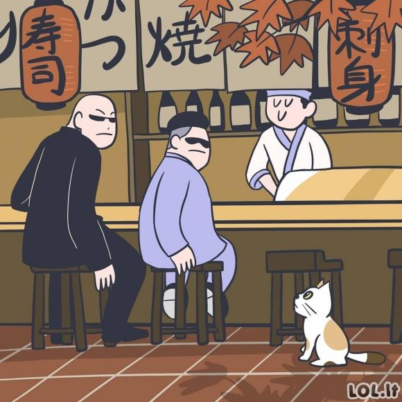 Katinukas restorane