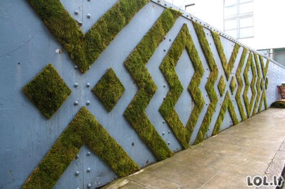 Samanota siena: Vis labiau plintanti namų dekoro detalė