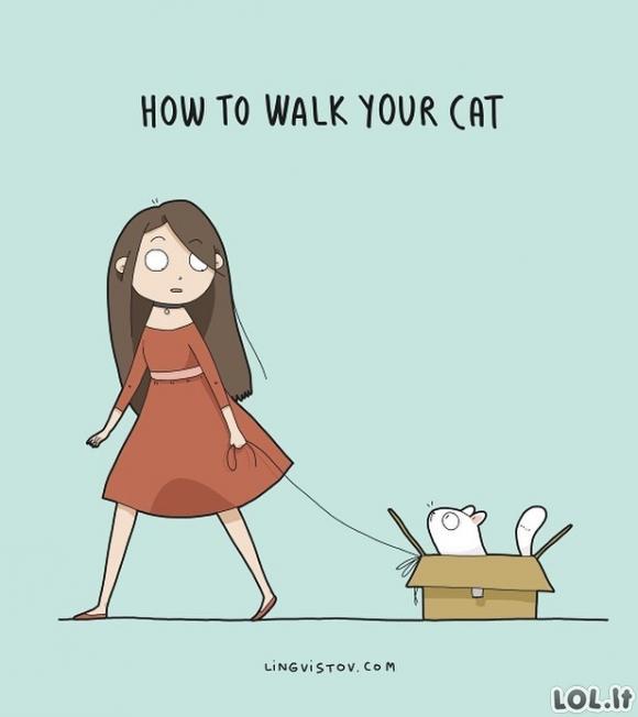 Kaip vedžioti savo katiną