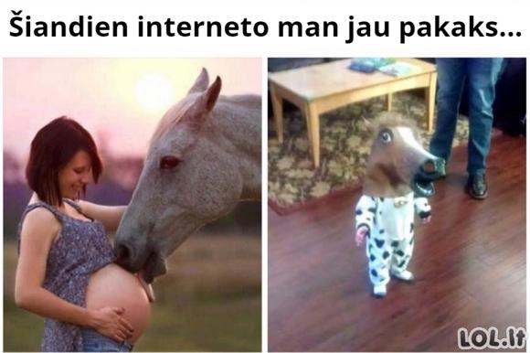 Per daug interneto