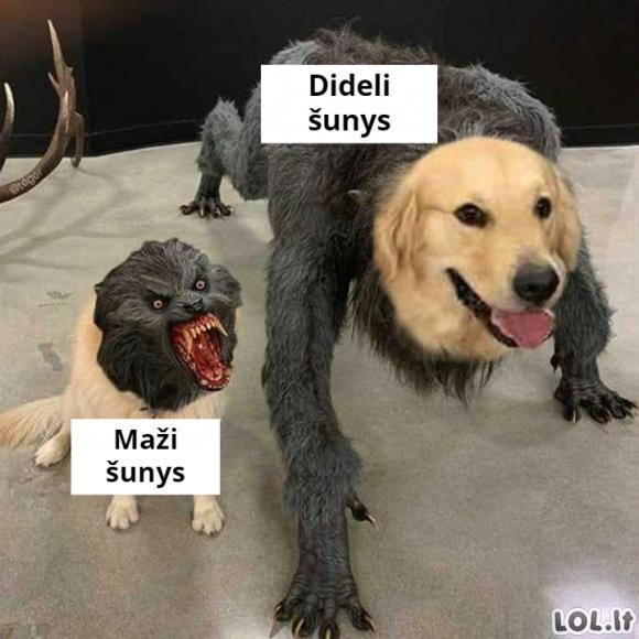 Maži ir dideli šunys
