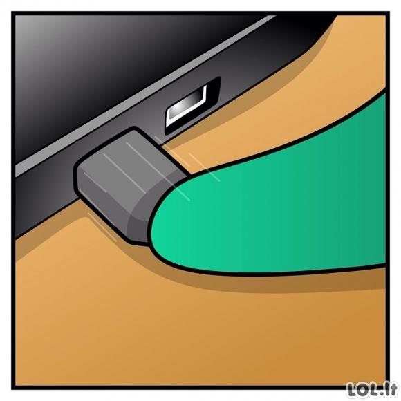 Kai pasiseka įdėti USB iš pirmo karto
