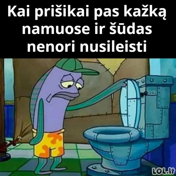 Kai pasinaudoji tualetu draugo namuose