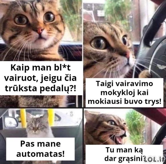 Blogi vairavimo įgūdžiai