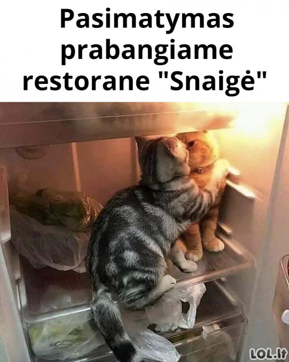 """Pasimatymas restorane """"Snaigė"""""""