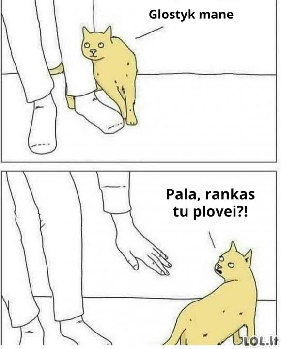 Katinuko paglostymas