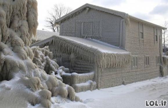 Kaip atrodo tikra šalta žiema [GALERIJA]