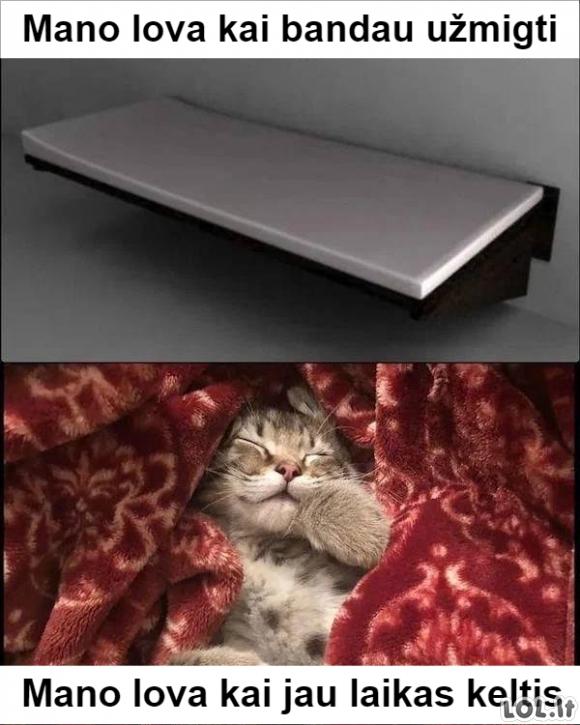 Patogumai lovoje
