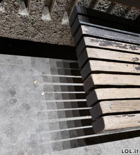 DIENOS PERLIUKAI [GIF ir FOTO]