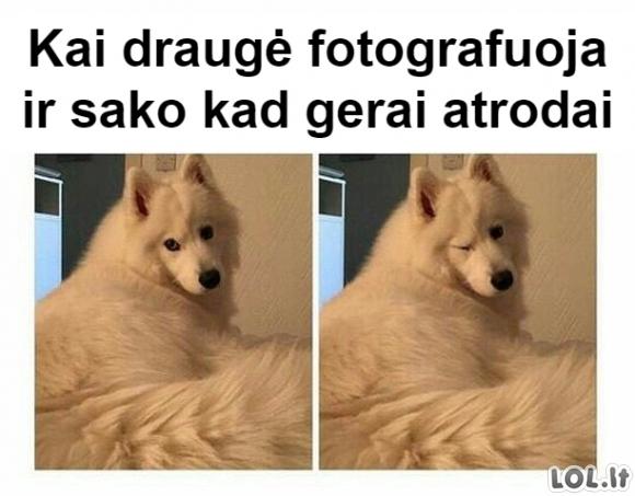 Draugė fotografuoja