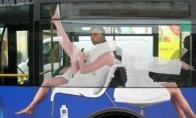 Apie autobusą, plaštakę ir kiti