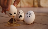 Apie kiaušinius, sveiką gyvenimo būdą ir kiti