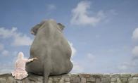 Apie drambliukus, varną ir kiti