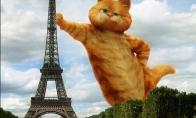 Apie Eifelio bokštą, generolą ir kiti