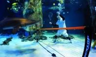10 keistų renginių po vandeniu
