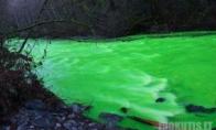 Žalioji upė (5 nuotraukos)