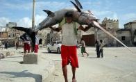 Somalio žvejų laimikis