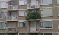 Balkonas Olandijoje