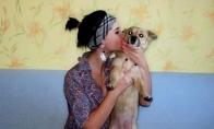 Ji, jos šuo ir glamūras