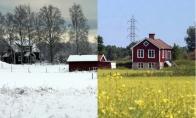 Žiema ir vasara