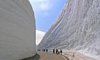 Sniegas Tojamos prefektūroje