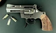 Nevisai įprastas revolveris