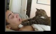 Su katinu nejuokauki