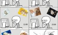 Gyvūnėlių paveiksliukai didina produktyvumą